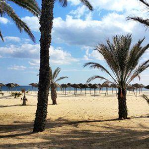 Песчаный пляж на тунисском курорте Хаммамет