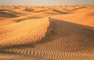 Экскурсия из Хаммамета в Сахару - одна из самых популярных экскурсий в Тунисе