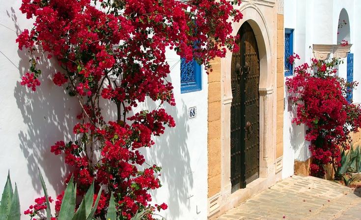 Экскурсия в Карфаген из Хаммамета затрагивает Сиди бу Саид - великолепный синий город